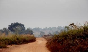班巴里郊外,一流离失所者营地附近的道路。© Adrienne Surprenant / Collectif / MSF
